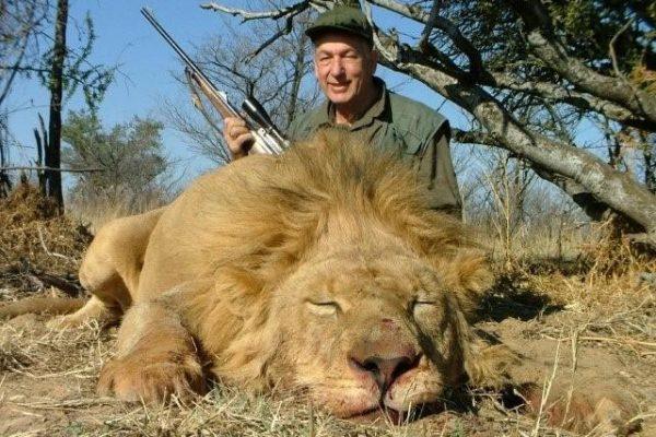 lion_001_big