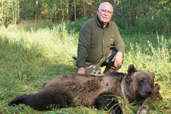 eurasian_brown_bear_02