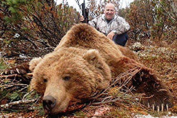 kamchatka_brown_bear_01