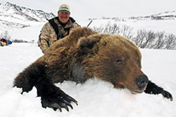 kamchatka_brown_bear_02