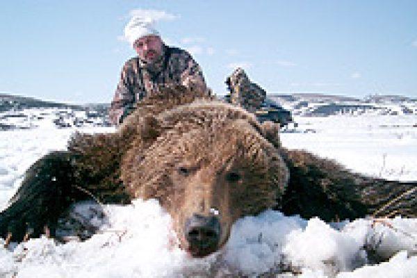 kamchatka_brown_bear_04
