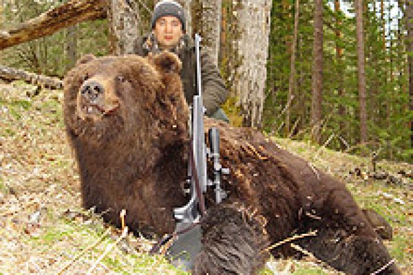 siberian_brown_bear_01