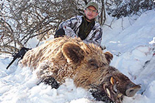 wild_boar_05
