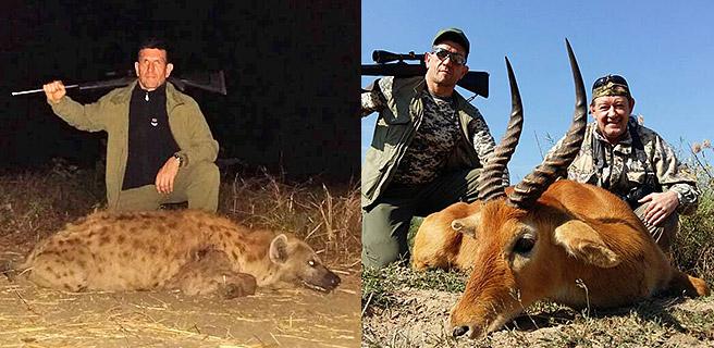 Африка: охота на гиен в Замбии
